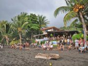 Backyard Bar & Saturday Surf Series